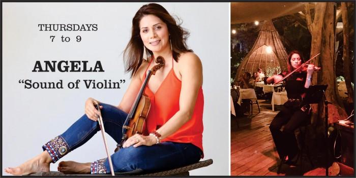 Angela Violin